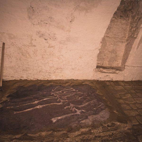 Pincetárlat az Almásy-kastélyban