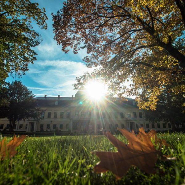Helló ősz!
