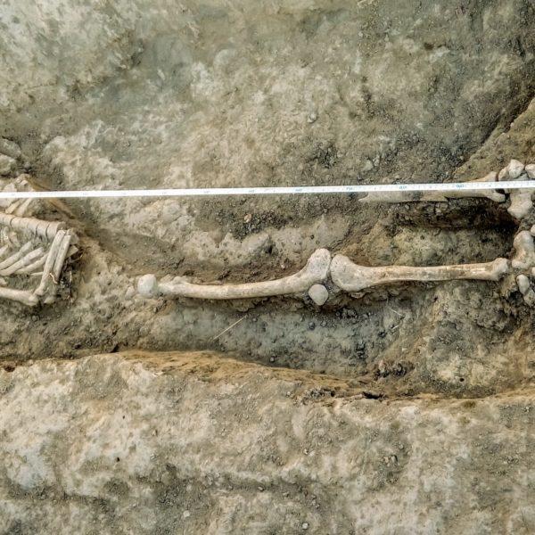 Régészeti szenzáció Gyula határában