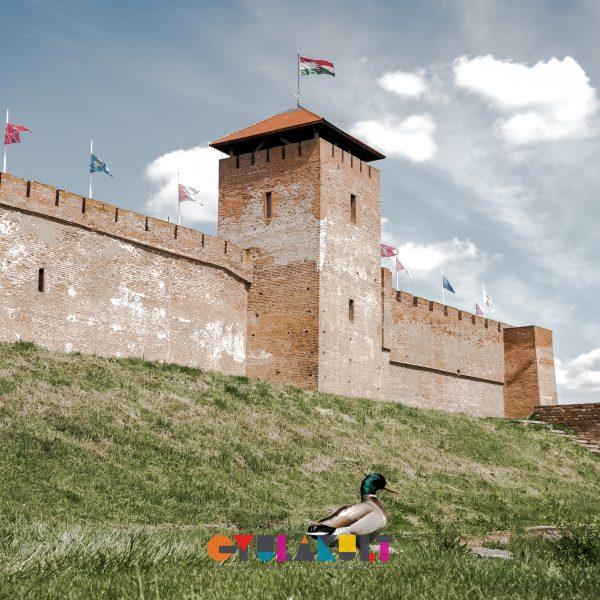 Augusztusban is Gyula: programok, események, rendezvények és nyitvatartás
