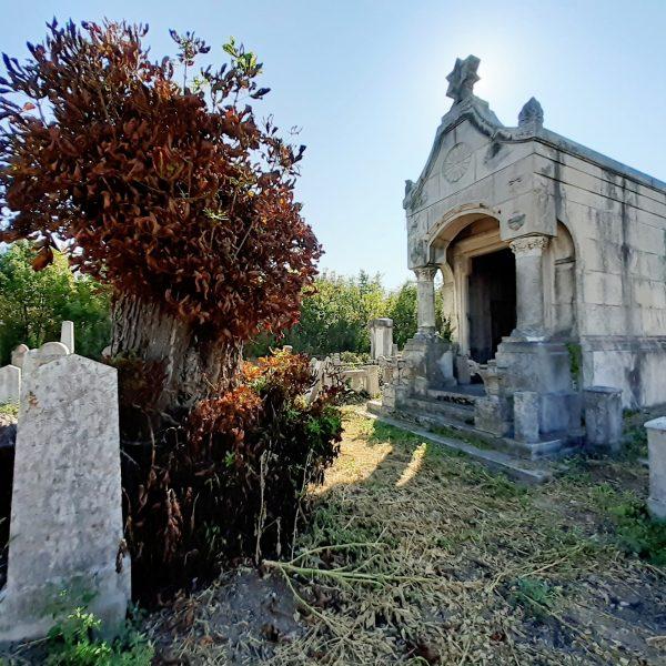 Kőre kő, avagy rendhagyó körséta a gyulai izraelita sírkertben